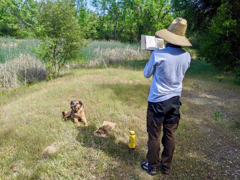 Resources for Aspiring Wildlife Biologists...